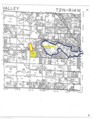 00000 Allen Road, Allegan, MI 49010 (MLS #19002682) :: Deb Stevenson Group - Greenridge Realty
