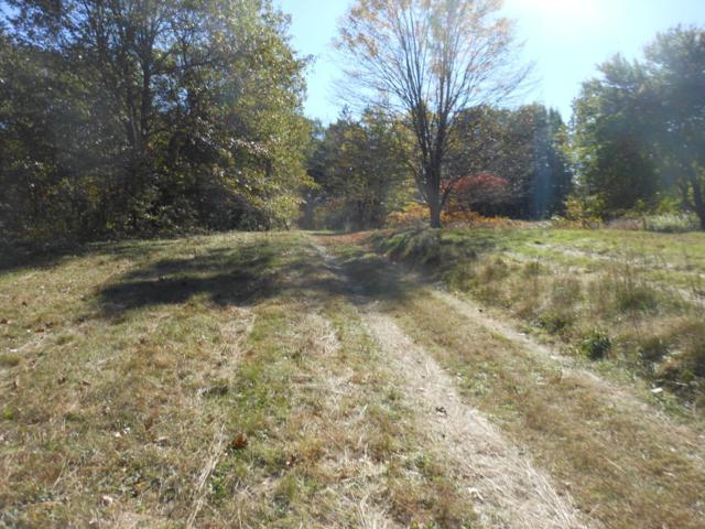 True Road, Niles, MI 49120 (MLS #19002892) :: Deb Stevenson Group - Greenridge Realty