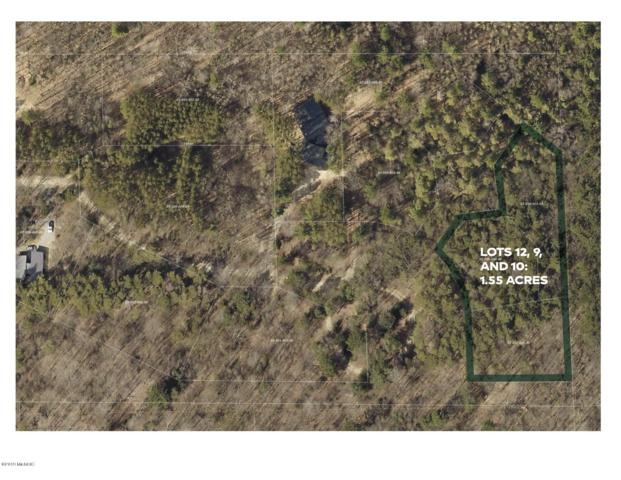 TBD Stonebridge Trail, Fennville, MI 49408 (MLS #19003170) :: JH Realty Partners