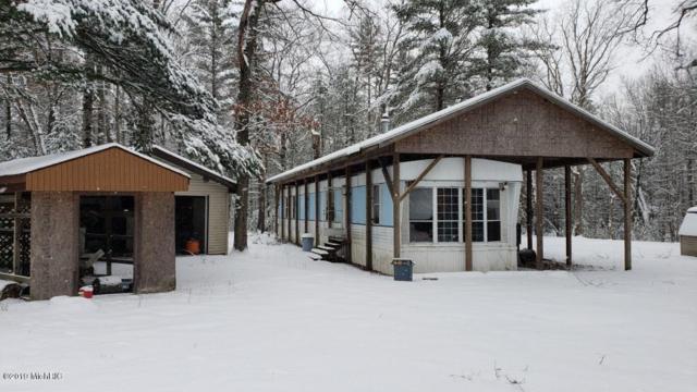 3877 E Creek Wood Drive, Chase, MI 49623 (MLS #19003171) :: Deb Stevenson Group - Greenridge Realty