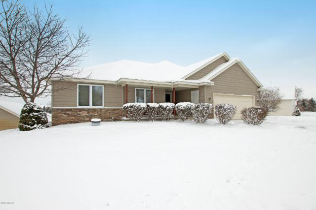 10337 Chinook Drive, Allendale, MI 49401 (MLS #19003568) :: Deb Stevenson Group - Greenridge Realty