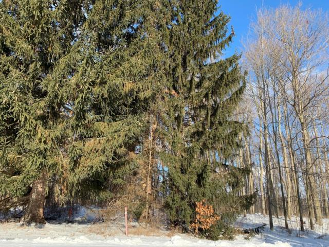Hjermstad Drive Lot 12, Ionia, MI 48846 (MLS #19003671) :: Matt Mulder Home Selling Team