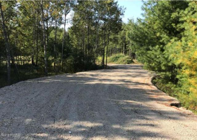 6901 W Decker Road, Ludington, MI 49431 (MLS #19003782) :: Deb Stevenson Group - Greenridge Realty