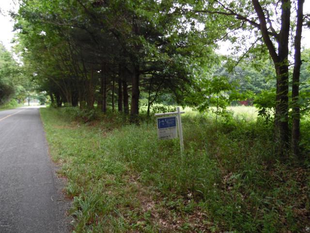 A N 16th Street, Plainwell, MI 49080 (MLS #19004046) :: Matt Mulder Home Selling Team