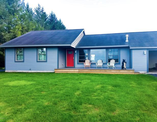 7353 South Shore Drive, Bear Lake, MI 49614 (MLS #19004062) :: CENTURY 21 C. Howard