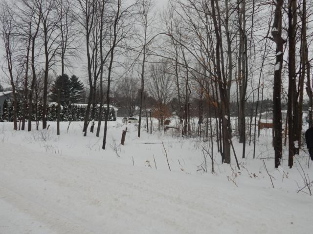 00 Potter Road Wildwood Lots 1, Bear Lake, MI 49614 (MLS #19004202) :: CENTURY 21 C. Howard