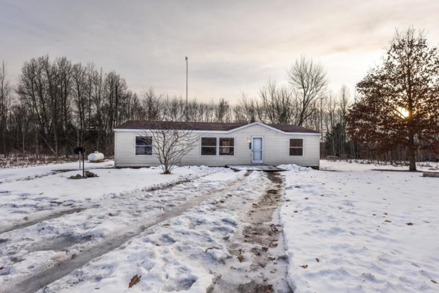 18731 Hill Drive, Reed City, MI 49677 (MLS #19004741) :: Deb Stevenson Group - Greenridge Realty