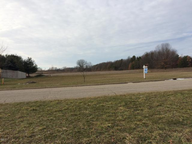 10650 Biltmore Lane, Portage, MI 49002 (MLS #19004808) :: Matt Mulder Home Selling Team