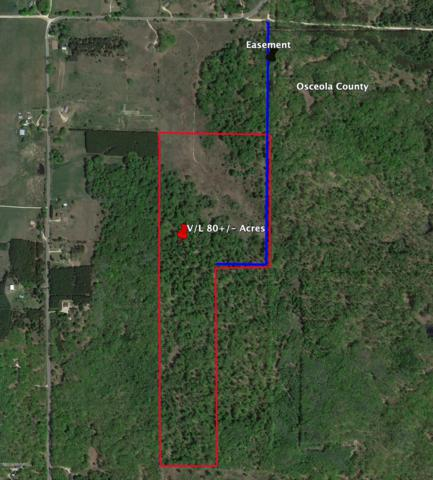 V/L-80+/- Acres 7 Mile Road, Reed City, MI 49677 (MLS #19004929) :: Deb Stevenson Group - Greenridge Realty