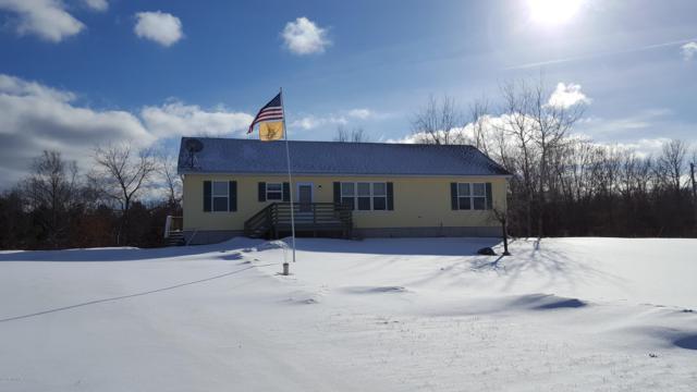 6135 E Hansen Road, Custer, MI 49405 (MLS #19005058) :: Deb Stevenson Group - Greenridge Realty