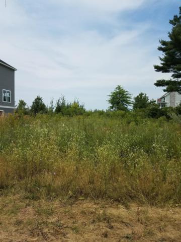 7239 Lakeview Avenue, South Haven, MI 49090 (MLS #19005201) :: Deb Stevenson Group - Greenridge Realty
