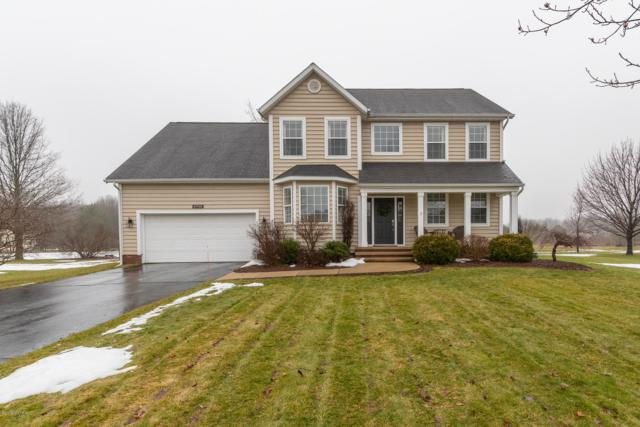 6946 Plum Hollow Circle, Kalamazoo, MI 49009 (MLS #19005230) :: Matt Mulder Home Selling Team