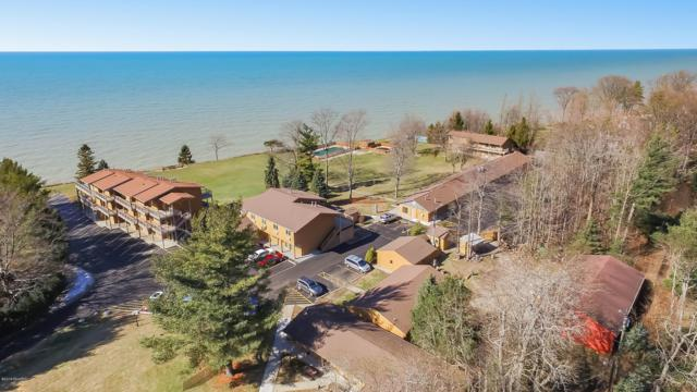 76648 11th Avenue, South Haven, MI 49090 (MLS #19005361) :: JH Realty Partners