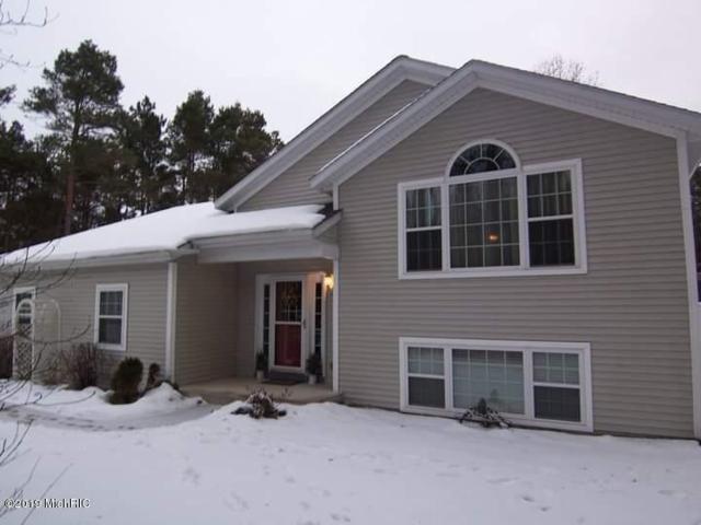 1723 42nd Street, Allegan, MI 49010 (MLS #19005369) :: Deb Stevenson Group - Greenridge Realty