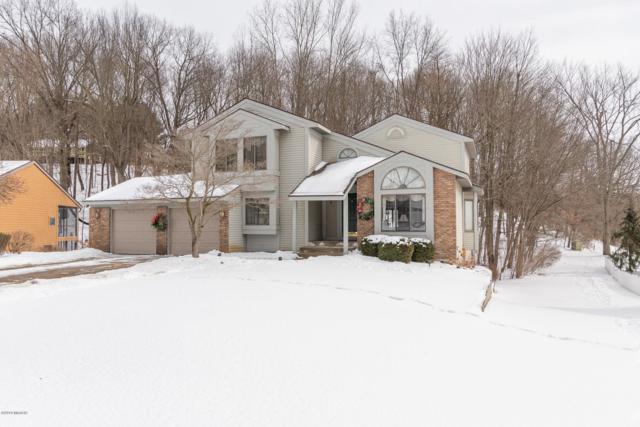 431 Midlakes Boulevard, Plainwell, MI 49080 (MLS #19005419) :: Matt Mulder Home Selling Team