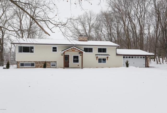 3840 E Gull Lake Drive, Hickory Corners, MI 49060 (MLS #19005631) :: CENTURY 21 C. Howard