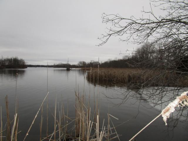 787 River Road, Coldwater, MI 49036 (MLS #19005683) :: Deb Stevenson Group - Greenridge Realty