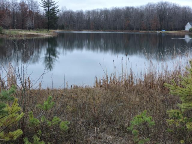 6619 Donegal Court, Canadian Lakes, MI 49346 (MLS #19005814) :: JH Realty Partners