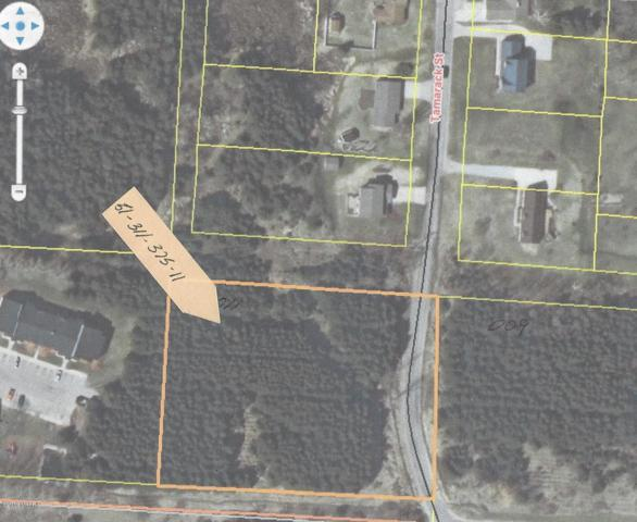 12th Street, Manistee, MI 49660 (MLS #19005824) :: JH Realty Partners