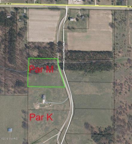 Lot M Meadow View Lane, Hart, MI 49420 (MLS #19006379) :: Deb Stevenson Group - Greenridge Realty