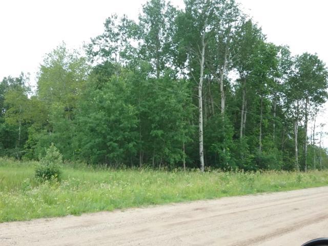 00 Feldhak Road, Kaleva, MI 49645 (MLS #19007476) :: Deb Stevenson Group - Greenridge Realty