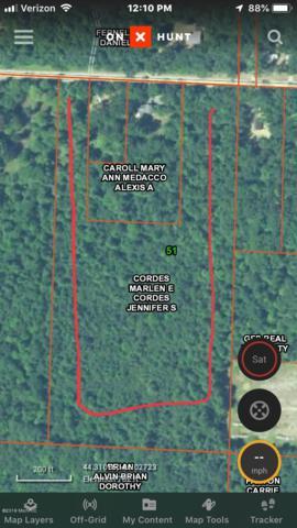 Coates Highway, Brethren, MI 49619 (MLS #19007581) :: Matt Mulder Home Selling Team