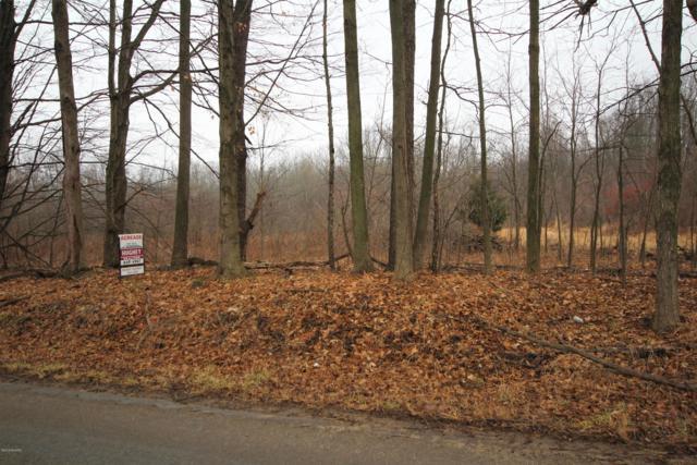 15717 E S Avenue, Climax, MI 49034 (MLS #19007764) :: Deb Stevenson Group - Greenridge Realty