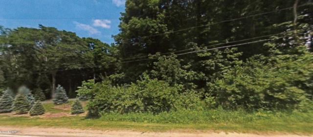0 N Red Bud Trail, Buchanan, MI 49107 (MLS #19008093) :: Deb Stevenson Group - Greenridge Realty
