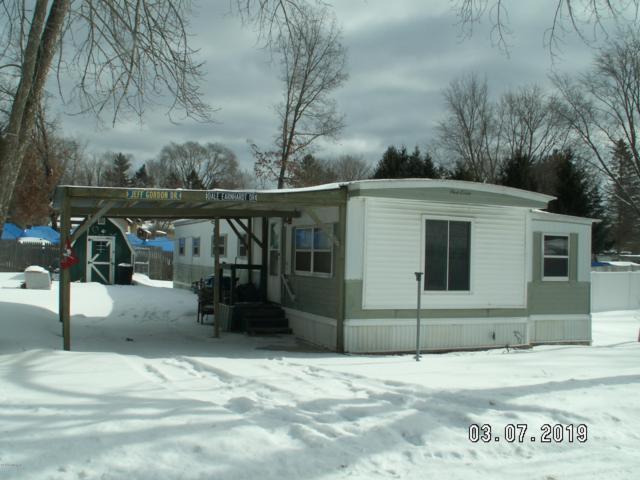 4690 River Street, Newaygo, MI 49337 (MLS #19008118) :: Deb Stevenson Group - Greenridge Realty