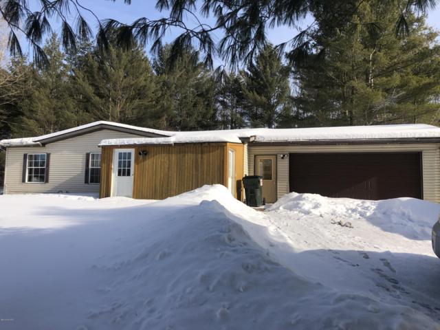 6331 E Deer Path Road, Evart, MI 49631 (MLS #19008220) :: Deb Stevenson Group - Greenridge Realty
