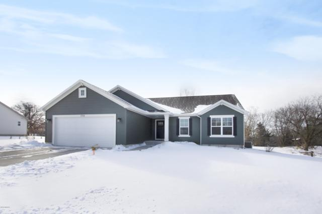 739 Skyview Trail, Ionia, MI 48846 (MLS #19008366) :: JH Realty Partners