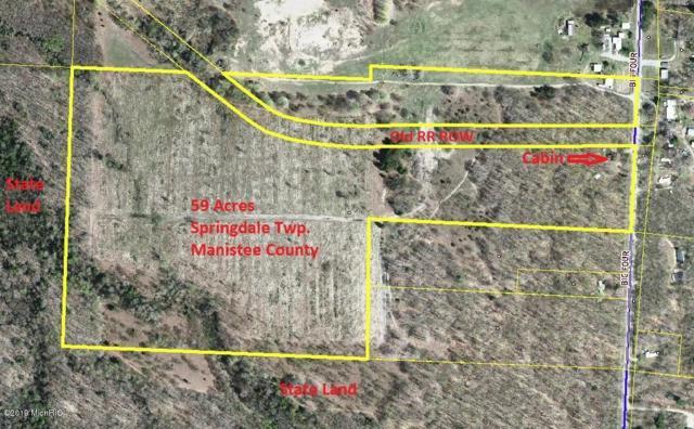 15466 Big Four Road, Bear Lake, MI 49614 (MLS #19008861) :: Matt Mulder Home Selling Team