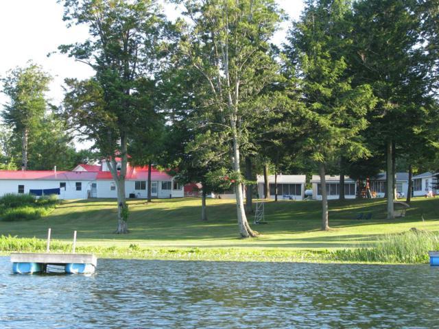8790 E Buchanan Road, Hesperia, MI 49421 (MLS #19008879) :: Matt Mulder Home Selling Team