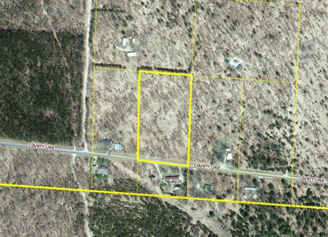 5096 S County Line Road, Free Soil, MI 49411 (MLS #19009230) :: Deb Stevenson Group - Greenridge Realty