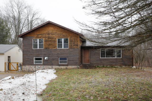 1251 112th Avenue, Otsego, MI 49078 (MLS #19009414) :: Matt Mulder Home Selling Team