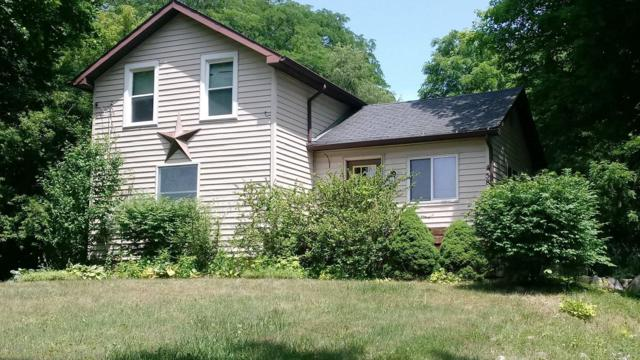 458 Wright Street, Jonesville, MI 49250 (MLS #19009632) :: CENTURY 21 C. Howard