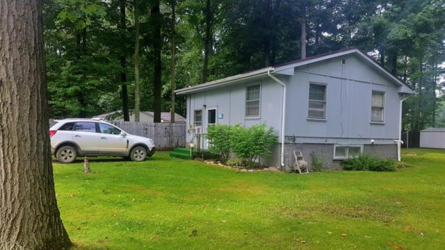 6240 Terry Drive, Six Lakes, MI 48886 (MLS #19009787) :: Matt Mulder Home Selling Team