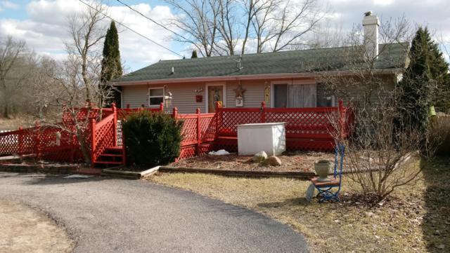 4231 Cole Road, Hillsdale, MI 49242 (MLS #19009893) :: Deb Stevenson Group - Greenridge Realty