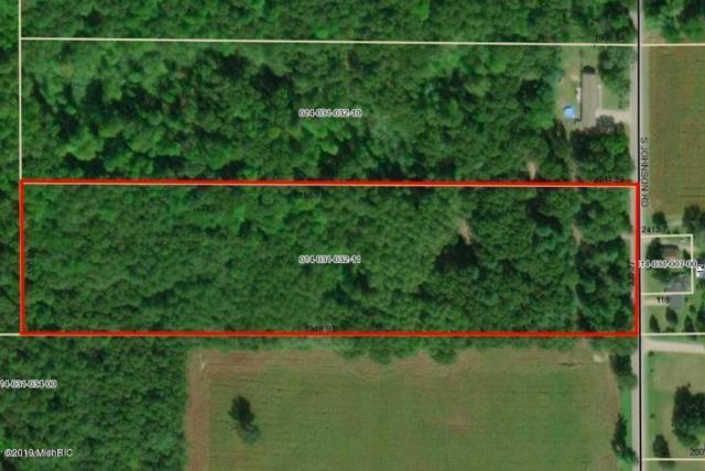 Parcel B S Johnson Road, Greenville, MI 48838 (MLS #19010346) :: Matt Mulder Home Selling Team