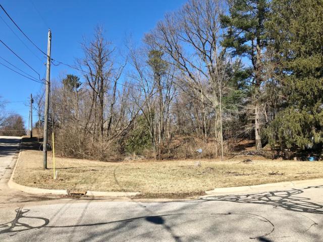 Parcel A-2 Oak Street, Stevensville, MI 49127 (MLS #19010651) :: Deb Stevenson Group - Greenridge Realty