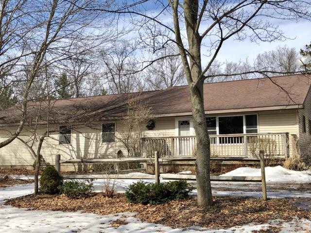 17634 Caberfae Highway, Wellston, MI 49689 (MLS #19010745) :: Matt Mulder Home Selling Team