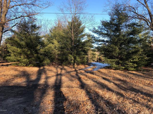 0 Blue Lake Road 79 Acres, Holton, MI 49425 (MLS #19010798) :: Matt Mulder Home Selling Team