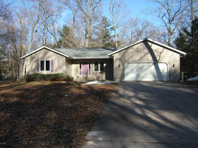 8230 Sheridan Street, Montague, MI 49437 (MLS #19010840) :: Matt Mulder Home Selling Team