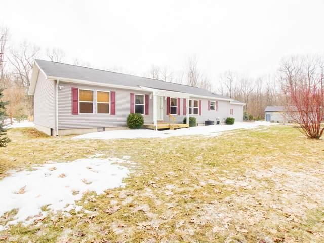 1050 W Woodland Park Drive, Bitely, MI 49309 (MLS #19010913) :: Matt Mulder Home Selling Team