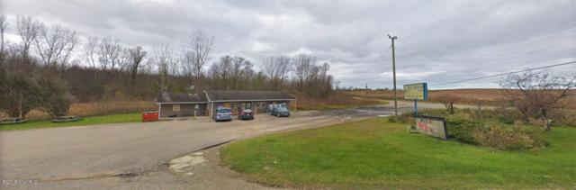 42120 Co Rd 687, Hartford, MI 49057 (MLS #19011150) :: Deb Stevenson Group - Greenridge Realty