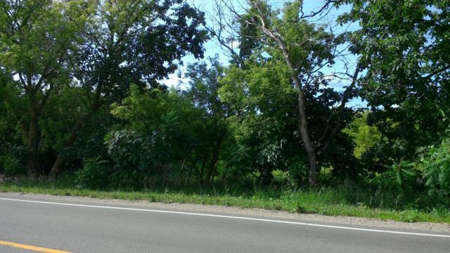 0 County Farm Road W, Greenville, MI 48838 (MLS #19011761) :: CENTURY 21 C. Howard