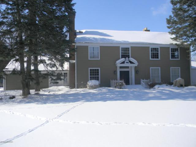 3871 S Luce Avenue, Fremont, MI 49412 (MLS #19011837) :: Matt Mulder Home Selling Team