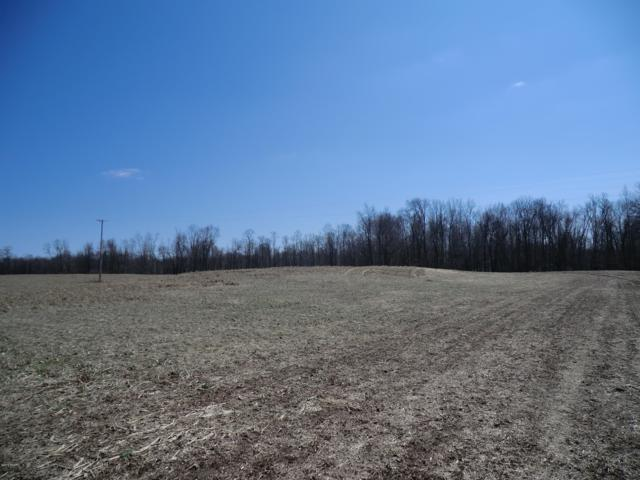 0 S Drive S, Athens, MI 49011 (MLS #19012039) :: JH Realty Partners