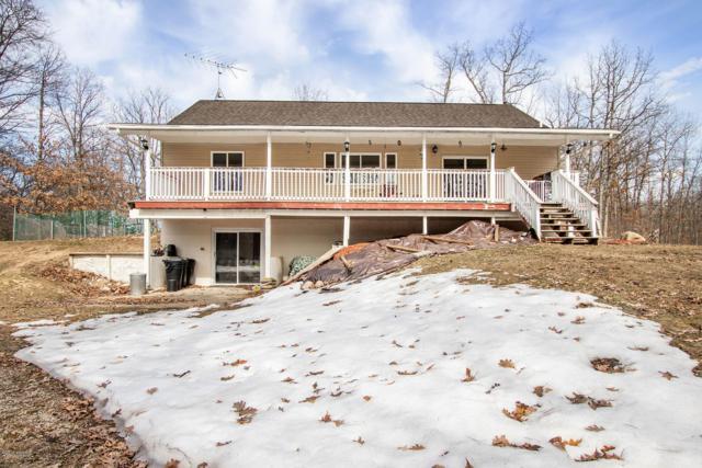 16953 Flarity Road, Brethren, MI 49619 (MLS #19012260) :: Matt Mulder Home Selling Team