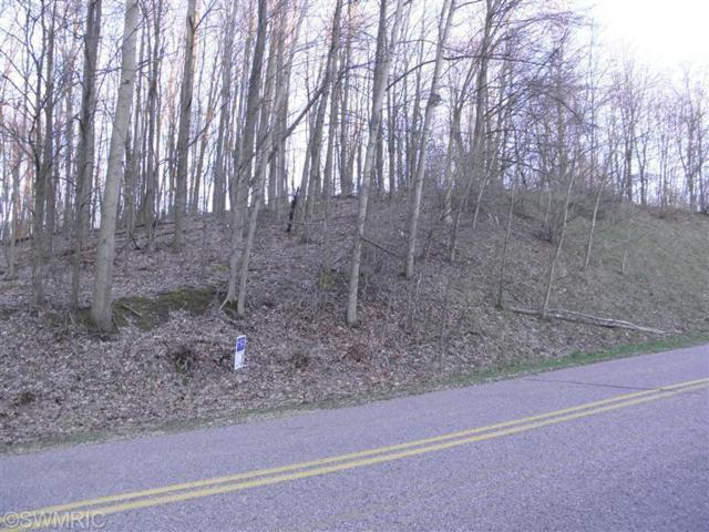 29 S Lake Doster Drive, Plainwell, MI 49080 (MLS #19012303) :: CENTURY 21 C. Howard
